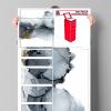 IKEA_MALM 6x1, Spiegelglas, 40x123 cm