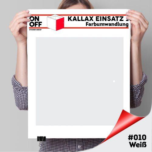 Kallax Einsatz 1 TÜR (631) #010 Weiß