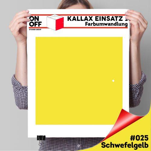 Kallax Einsatz 1 TÜR (631) #025 Schwefelgelb