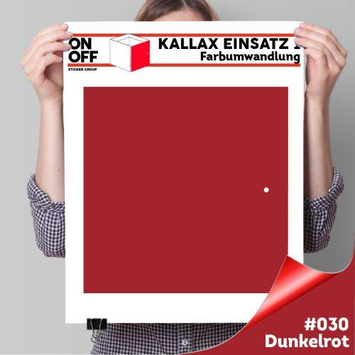 Kallax Einsatz 1 TÜR (631) #030 Dunkelrot