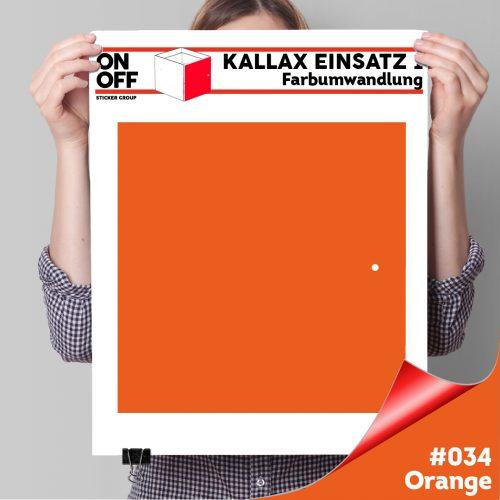 Kallax Einsatz 1 TÜR (631) #034 Orange