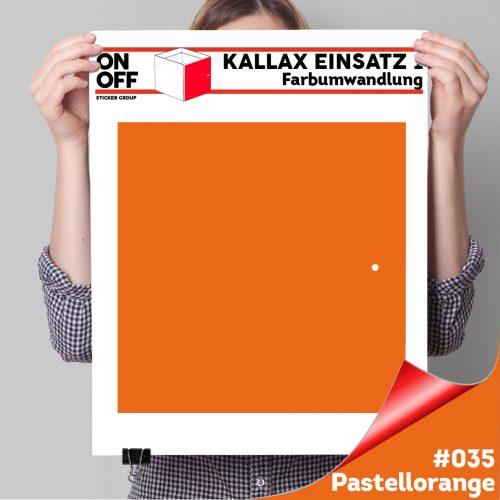 Kallax Einsatz 1 TÜR (631) #035 Pastellorange