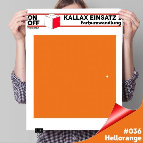 Kallax Einsatz 1 TÜR (631) #036 Hellorange