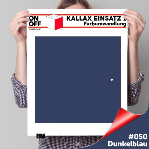Kallax Einsatz 1 TÜR (631) #050 Dunkelblau