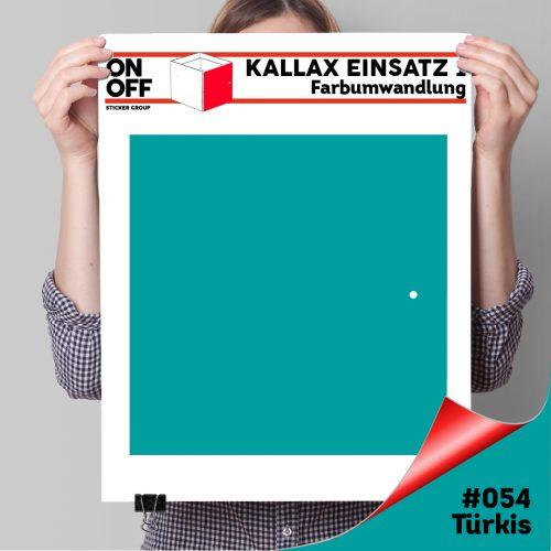 Kallax Einsatz 1 TÜR (631) #054 Türkis