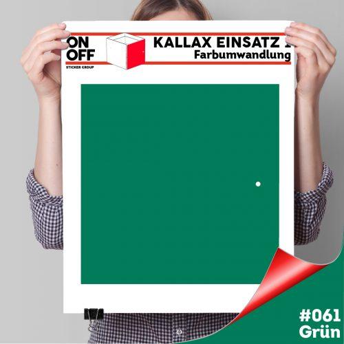 Kallax Einsatz 1 TÜR (631) #061 Grün