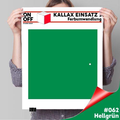 Kallax Einsatz 1 TÜR (631) #062 Hellgrün