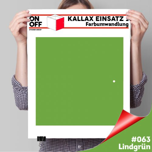 Kallax Einsatz 1 TÜR (631) #063 Lindgrün