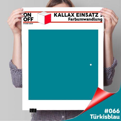 Kallax Einsatz 1 TÜR (631) #066 Türkisblau