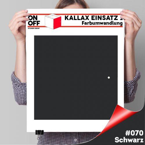 Kallax Einsatz 1 TÜR (631) #070 Schwarz