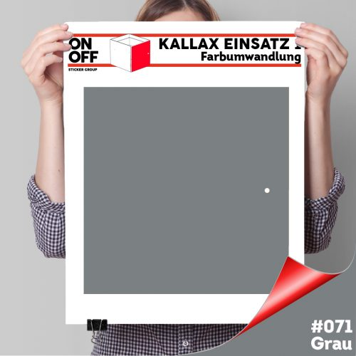 Kallax Einsatz 1 TÜR (631) #071 Grau