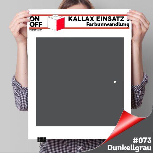 Kallax Einsatz 1 TÜR (631) #073 Dunkelgrau