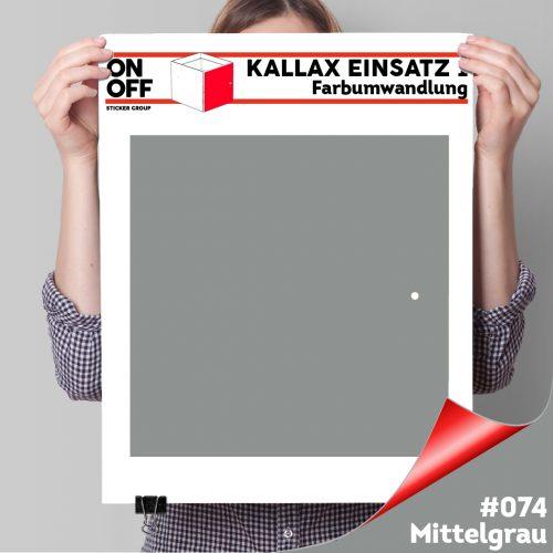 Kallax Einsatz 1 TÜR (631) #074 Mittelgrau
