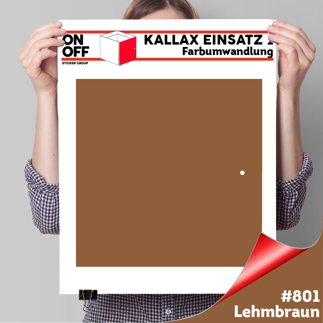 Kallax Einsatz 1 TÜR (631) #801 Lehmbraun