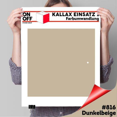 Kallax Einsatz 1 TÜR (631) #816 Dunkelbeige