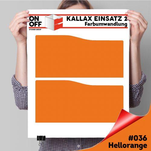 Kallax Einsatz 2 SCHUBLADEN mit WELLE (631) #036 Hellorange