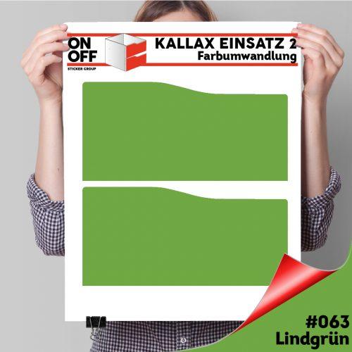 Kallax Einsatz 2 SCHUBLADEN mit WELLE (631) #063 Lindgrün