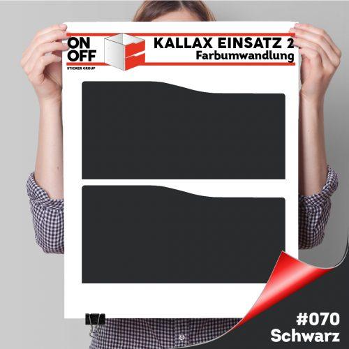 Kallax Einsatz 2 SCHUBLADEN mit WELLE (631) #070 Schwarz