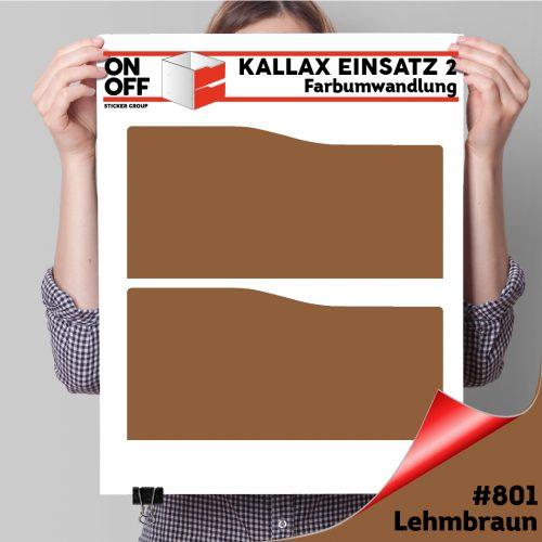 Kallax Einsatz 2 SCHUBLADEN mit WELLE (631) #801 Lehmbraun