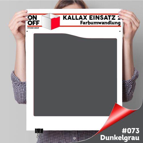 Kallax Einsatz 2 (Welle) #073 Dunkelgrau