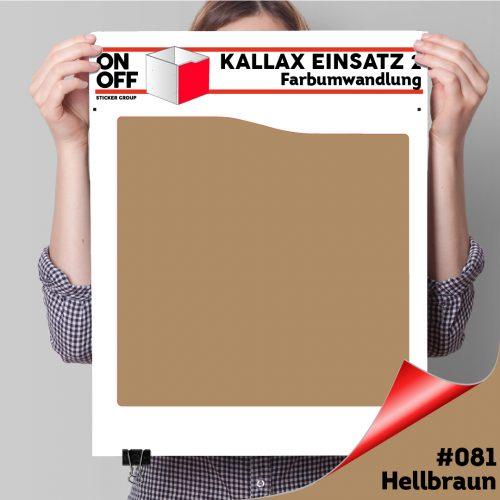 Kallax Einsatz 2 (Welle) #081 Hellbraun