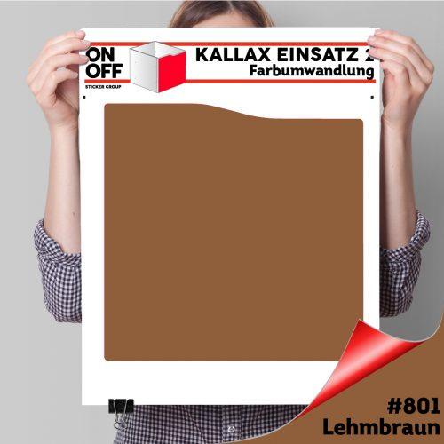Kallax Einsatz 2 (Welle) #801 Lehmbraun