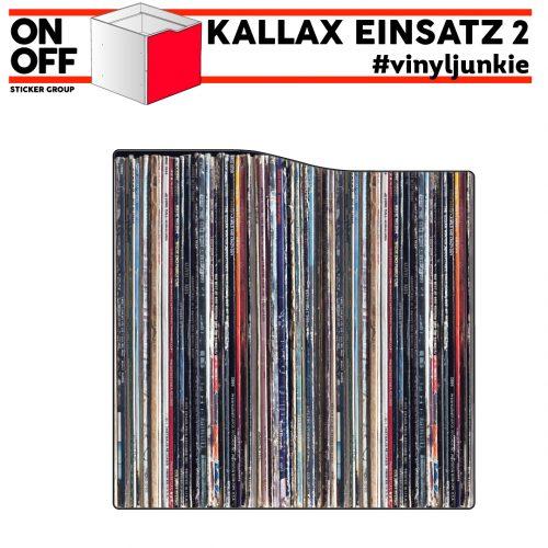 #cdj #vinyljunkie IKEA KALLAX Einsatz mit Tür (Welle)